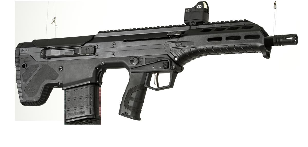Pin on Bear Arms