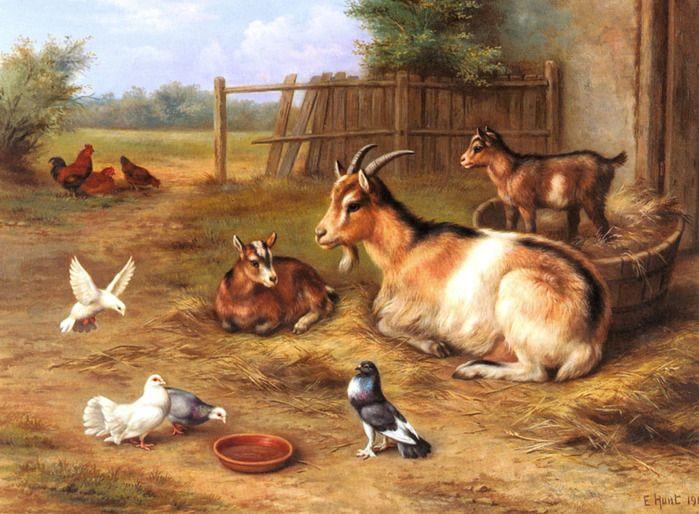 Семейство домашних животных картинки