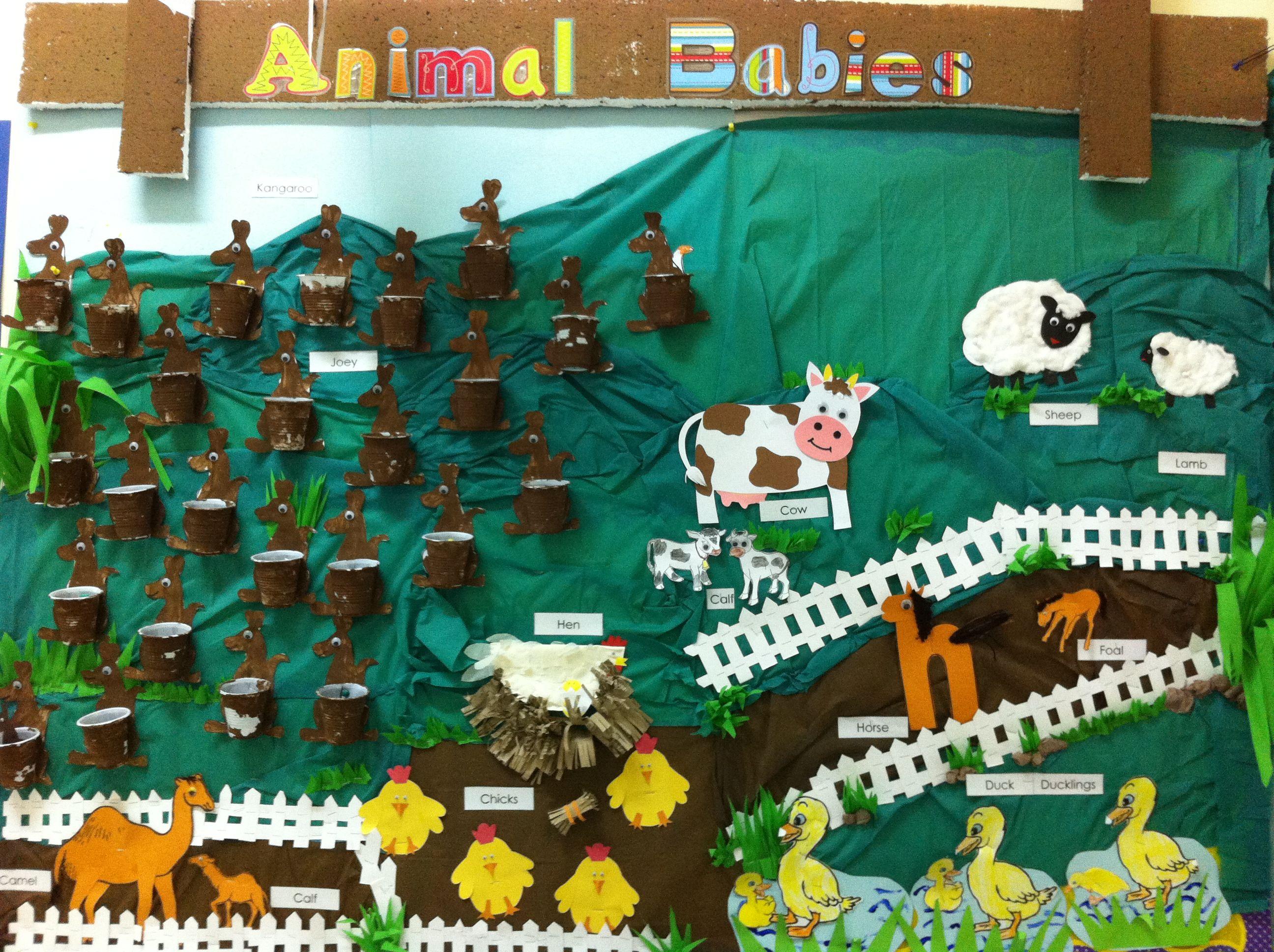 Bulletin Board Animal Babies