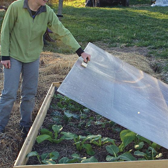 Cold Frame, Garden Ideas Diy