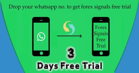 Hello Traders I Am Making A Whatsapp Group Of Traders Investors