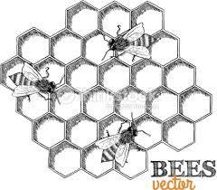 R sultat de recherche d 39 images pour ruches dessin miel - Dessin de ruche d abeille ...