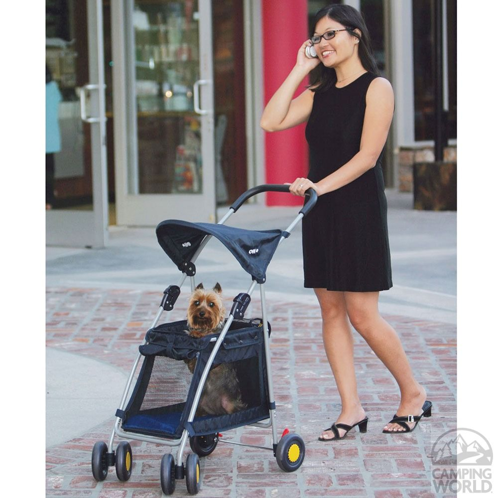 When walking long distances, small pets may get tired. But