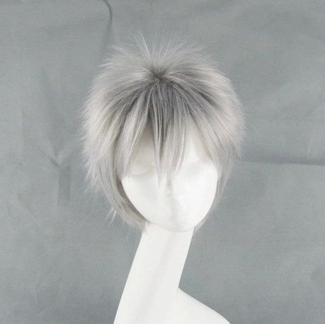 Wigs Silver Anime Wig
