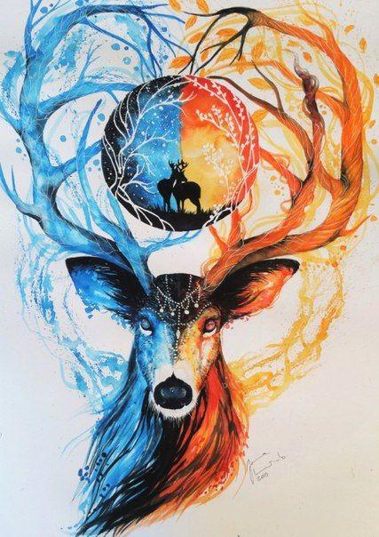 Fotograf Drawings Art Drawings Watercolor Art