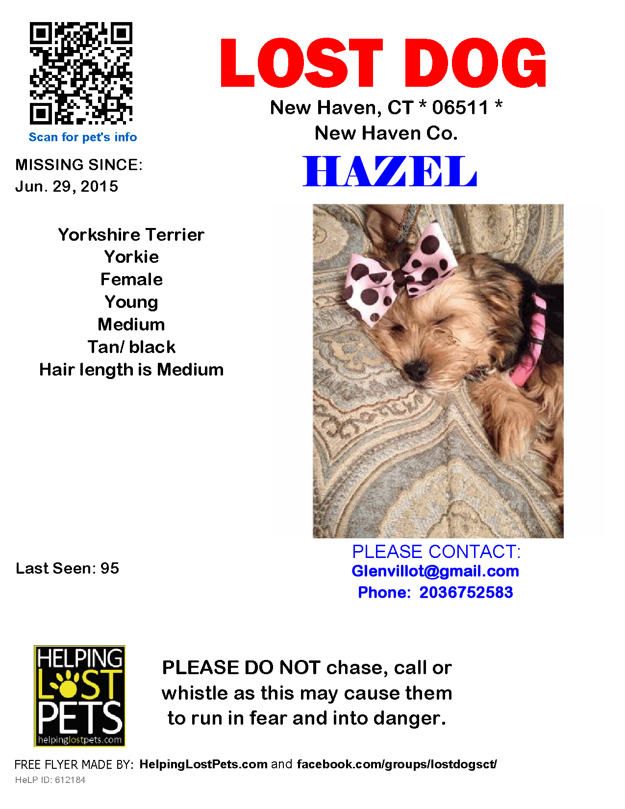Lost Dog Female New Haven Ct Usa 06511 Losing A Dog Yorkshire Terrier Dogs
