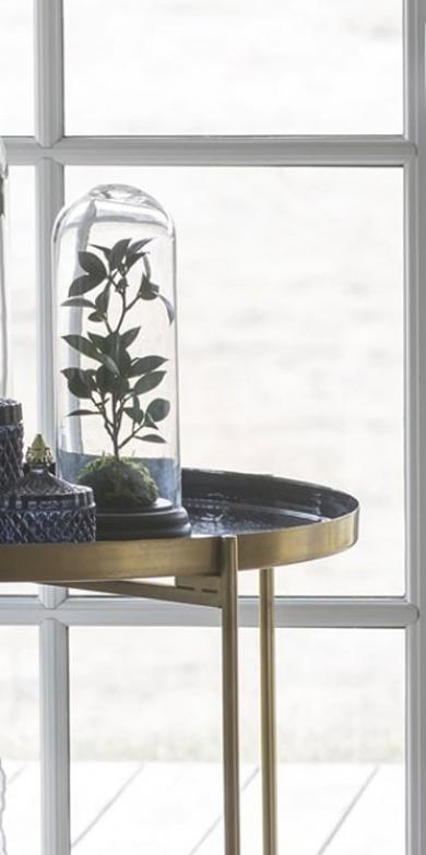 Plante artificielle sous cloche en verre #deco #d  co #d  coration #d  corationint  rieure #d  comaison #salon #home #homedecor #homesweethome #maison #maisondecoration #maisonmoderne #scandinave #scandinavianstyle #interiordesign #interiordesignideas #interiordecorating #homifab #plante #verre
