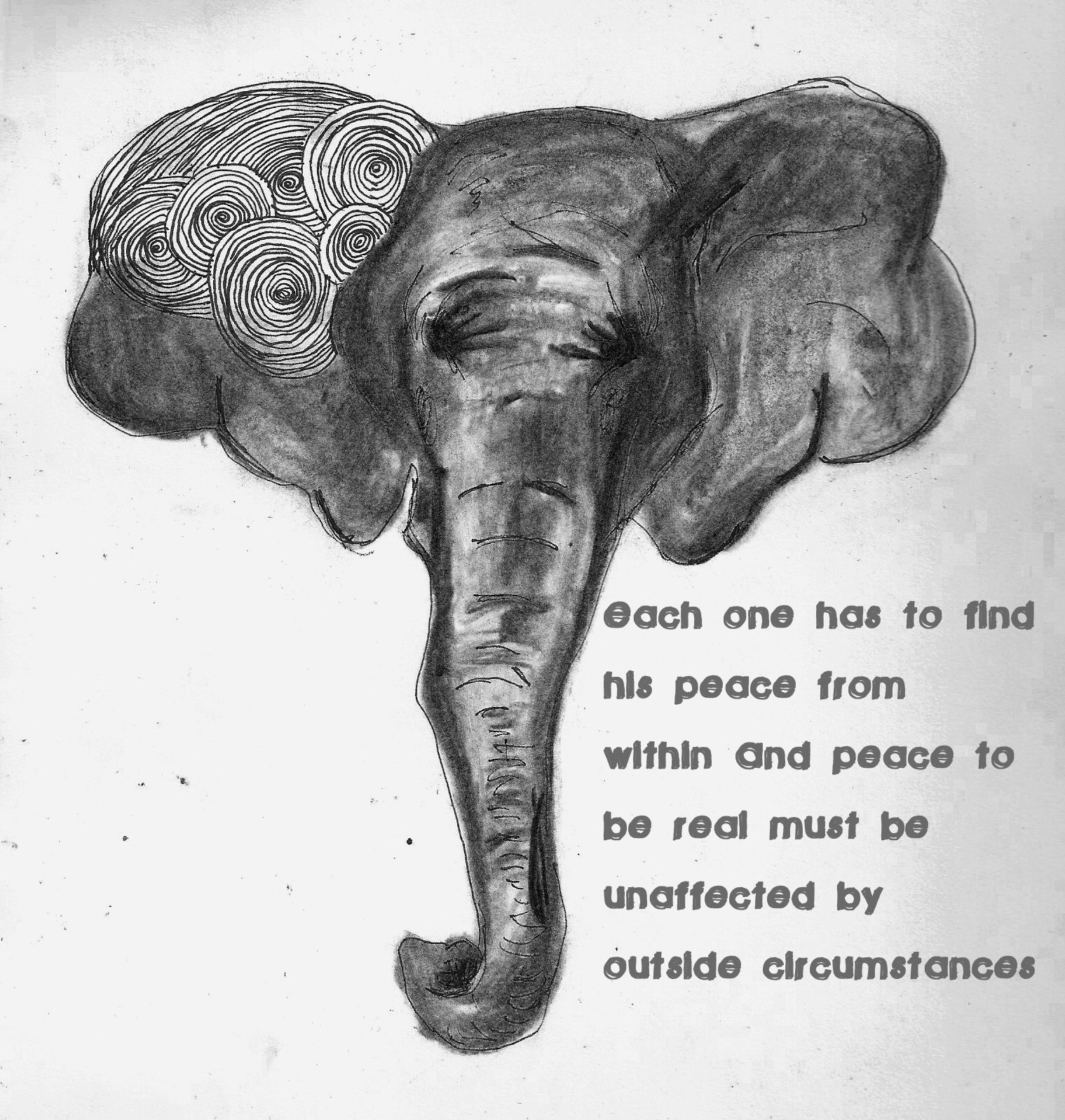 ghandi elephant quote by ghandi let your light shine