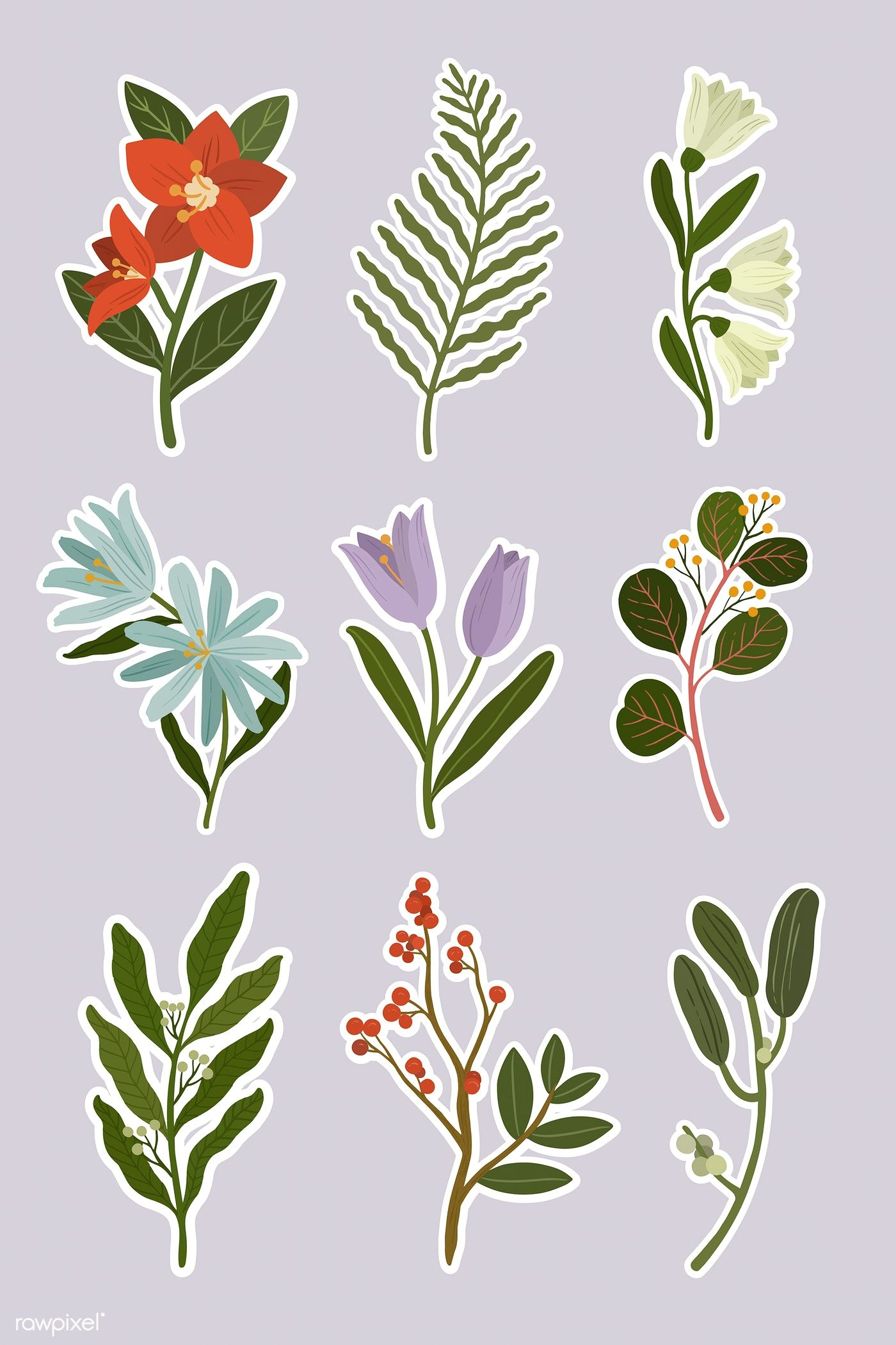 Flowers set on purple background vector free image by