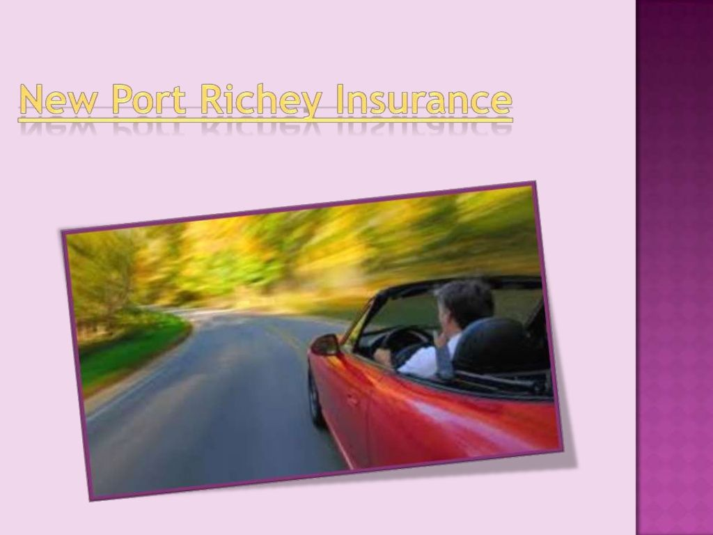 New Port Richey Auto Insurance Firms Supply A Vast Selection Of