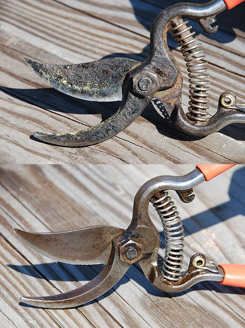 Pruning shears sharpen and clean d i y tool time for Utiles de jardineria