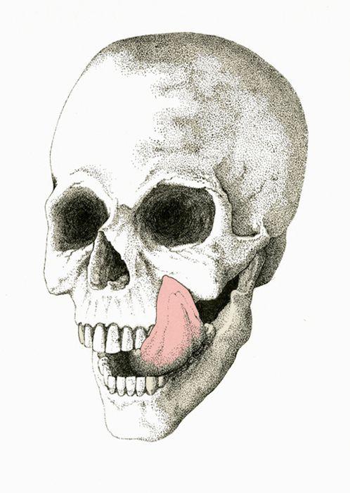 ALL MINE | Skeletons, Memento mori and Skull anatomy