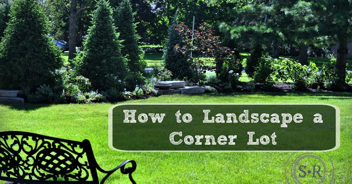 Corner City Lot Landscape Garden Evergreen Shrub Perennial Rose Mixed Border How To Diy Idea Corner Landscaping Front Yard Landscaping Privacy Landscaping