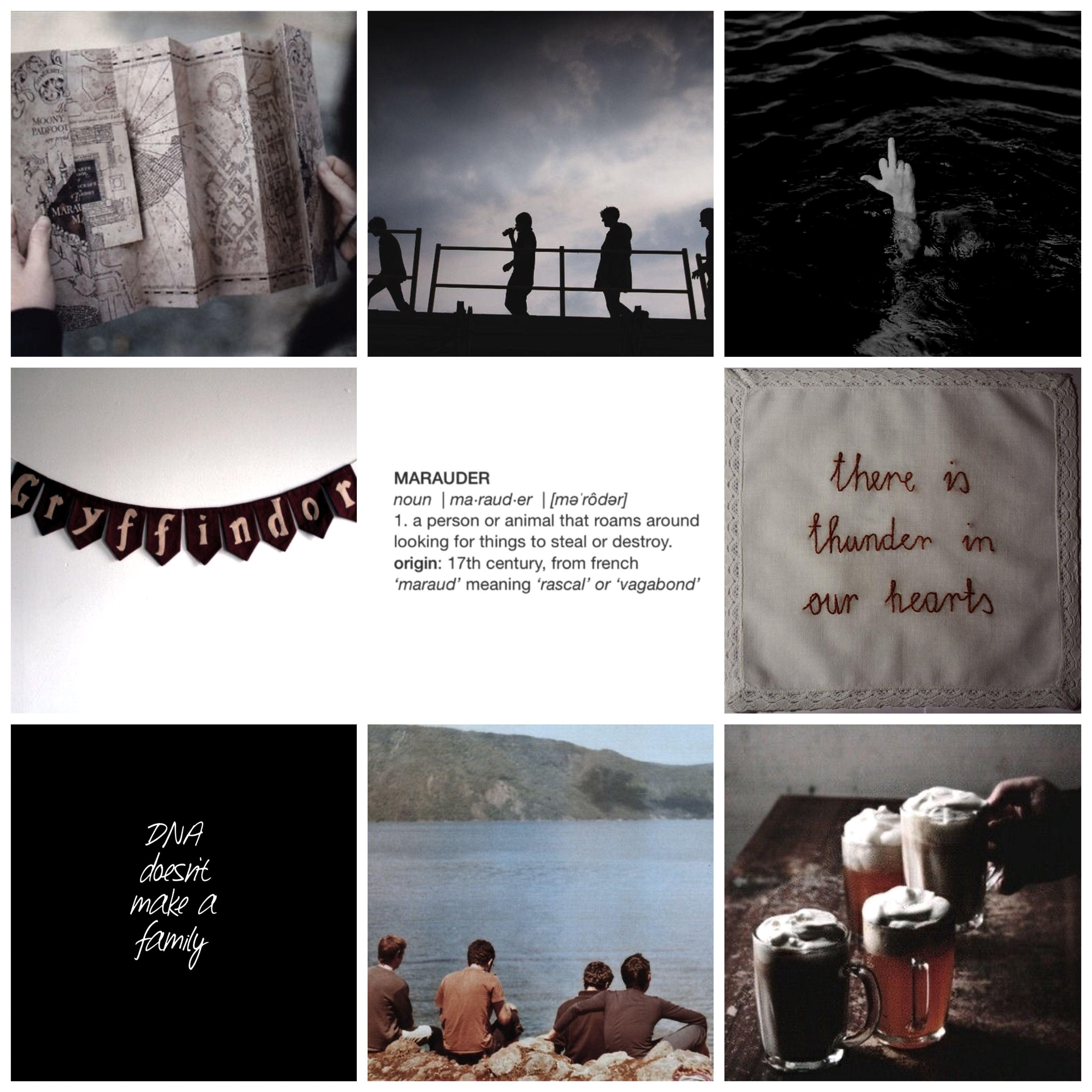 Marauders Aesthetic The Marauders Harry Potter Sirius James Potter