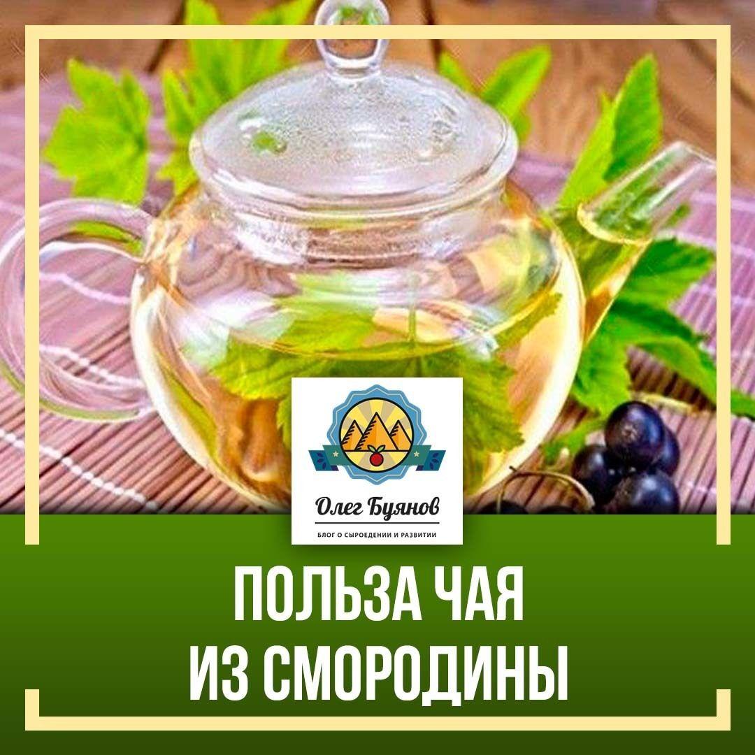 чай с смородиновым листом