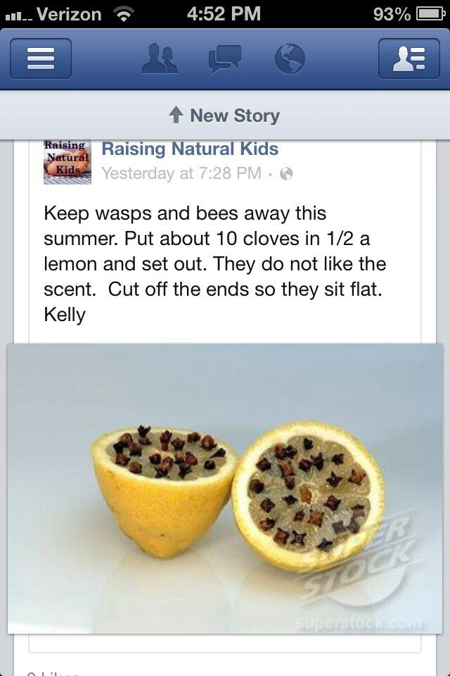 Wasps killer--I need to try this.