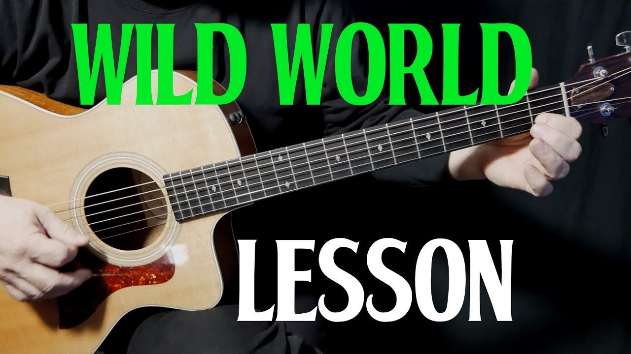 Lesson How To Play Wild World On Guitar By Cat Stevens