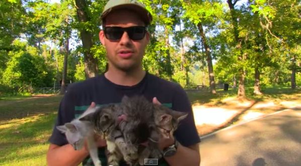 Kittens rescued while on a hike!