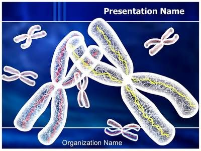 Chromosomes structure powerpoint template is one of the best chromosomes structure powerpoint template is one of the best powerpoint toneelgroepblik Images