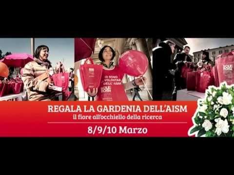 """Segna in Agenda... 8, 9 e 10 Marzo 2013 """"Gardenia dell'Aism"""" lottiamo insieme contro la #SclerosiMultipla il video #aismsiena"""