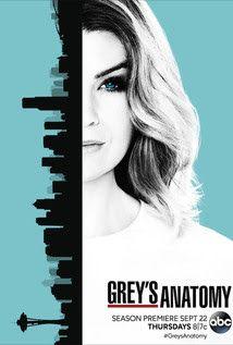 Download Grey S Anatomy 13ª Temporada Dublado E Legendado Mega