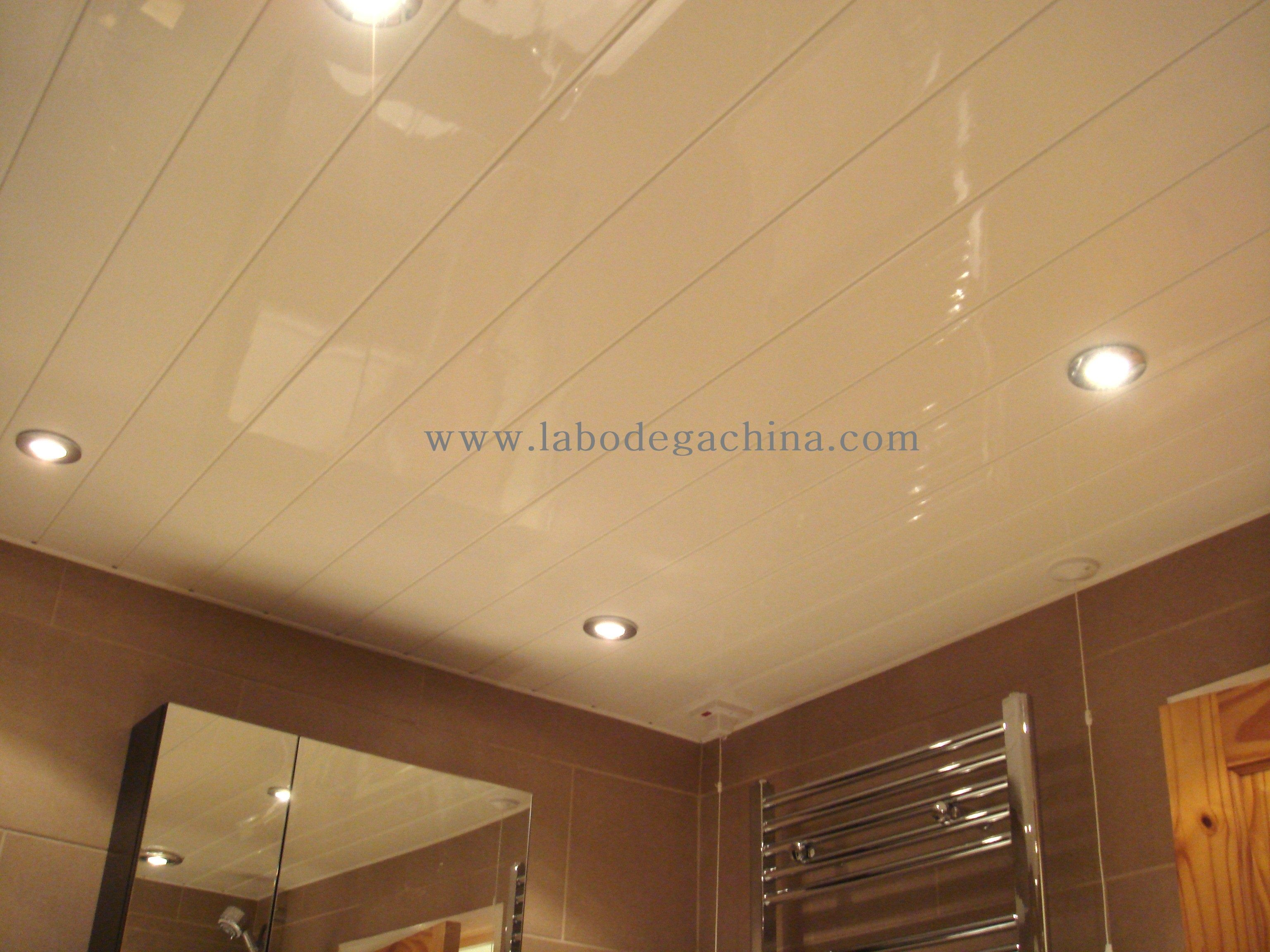 pvc ceiling china techos en pvc www. Black Bedroom Furniture Sets. Home Design Ideas