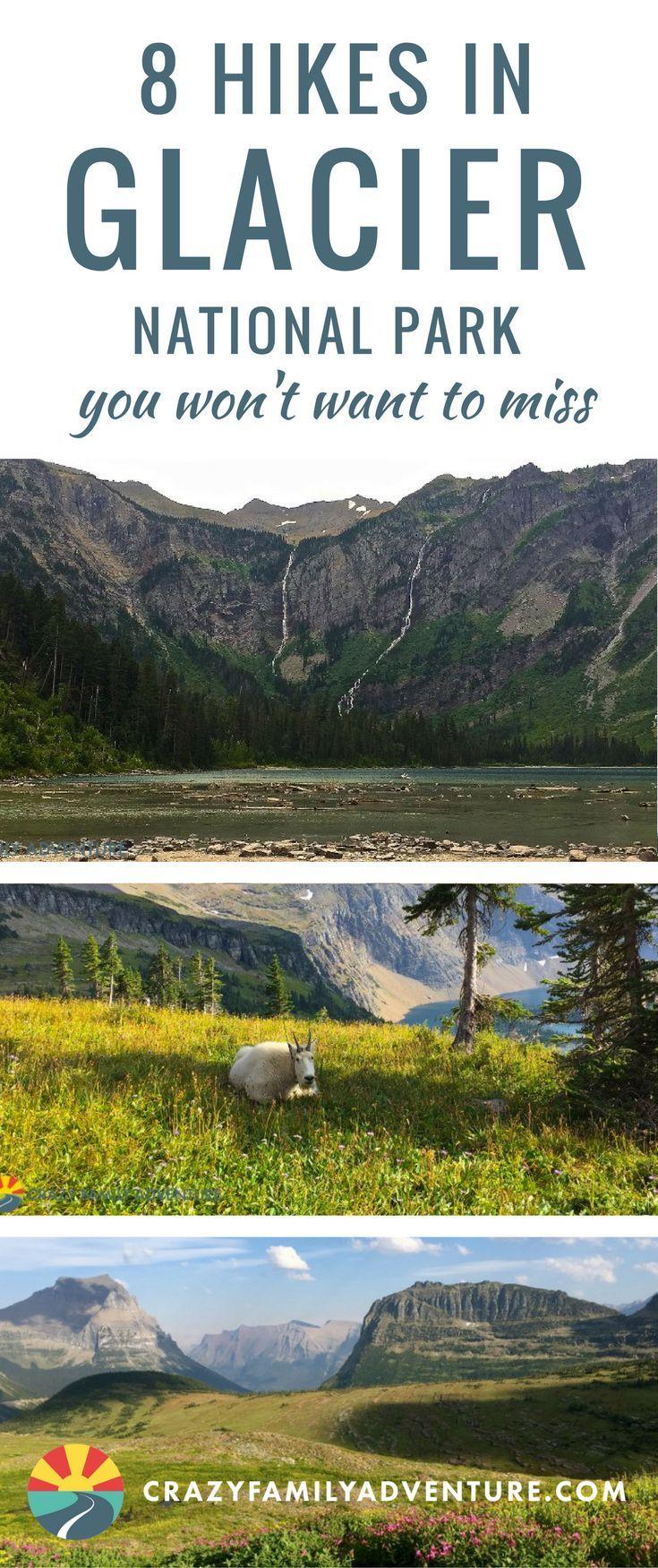 Photo of Die besten Wanderungen im Glacier National Park mit Kindern