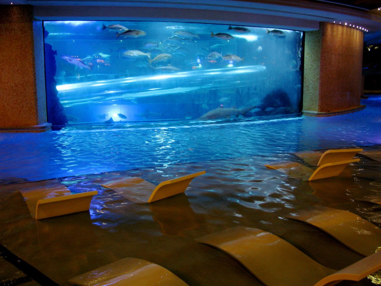 Fish aquarium karachi - I So Need This Right Now But With A Movie Screen Instead Of