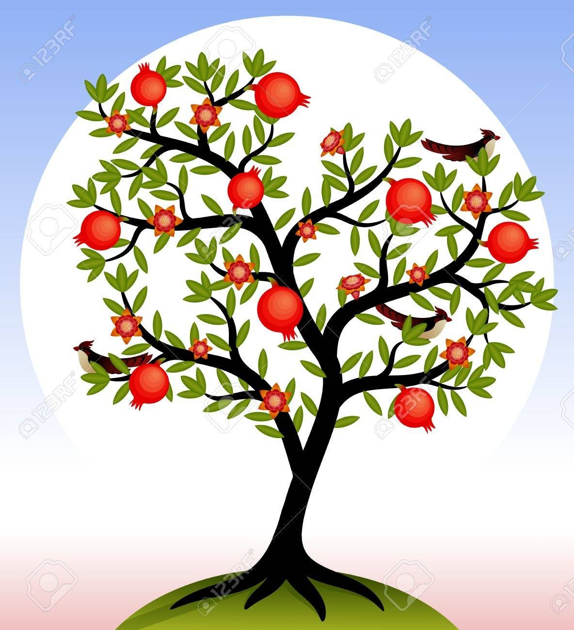 Fruit Tree Pomegranate Tree With Fruits And Flowers Birds On Fruit Trees Tree Mural Plant Drawing