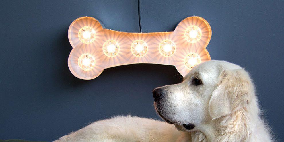 Dog Bone Lamp Goodwin Goodwin Signs That Rock London Sign