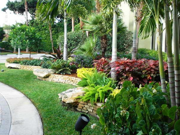 Wow what a lush landscape i love it florida landscaping for Florida landscape ideas front yard
