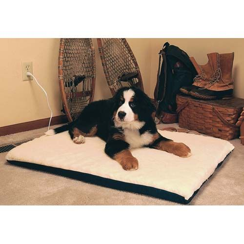widest prices shipping selection and free keep mall australia bed your amaki street pet lowest at for info comfortable on all offers large select of dog items the heated beds