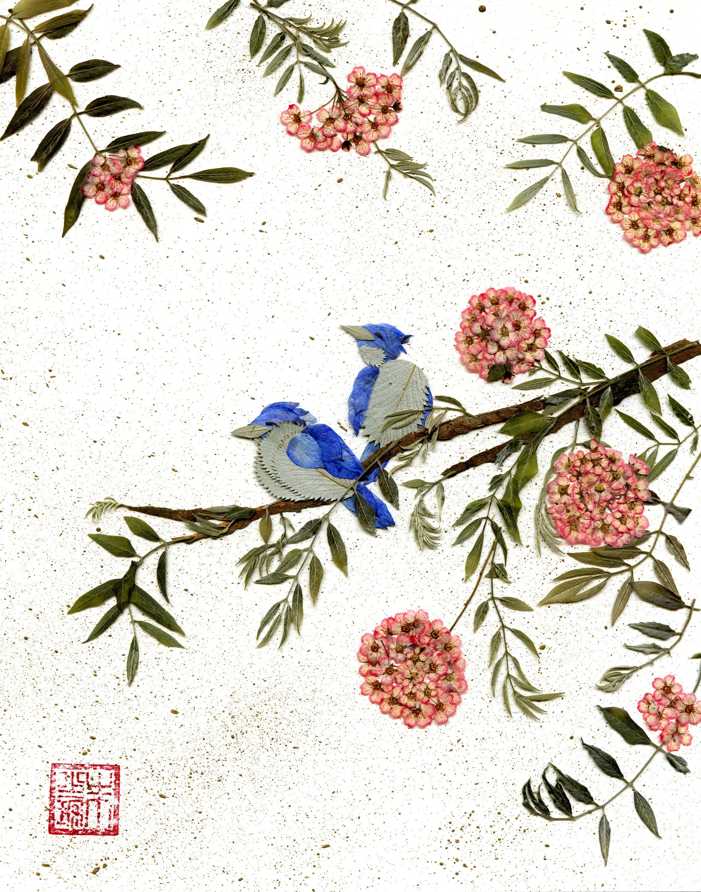 make pressed flower cards with sketches and watercolors of birds or other bac