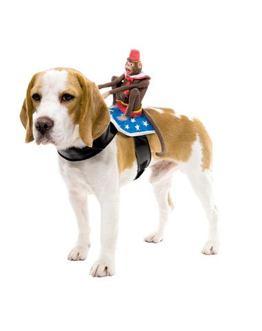 Monkey Rider Dog Costume Dog Costumes Funny Pet Costumes Pet