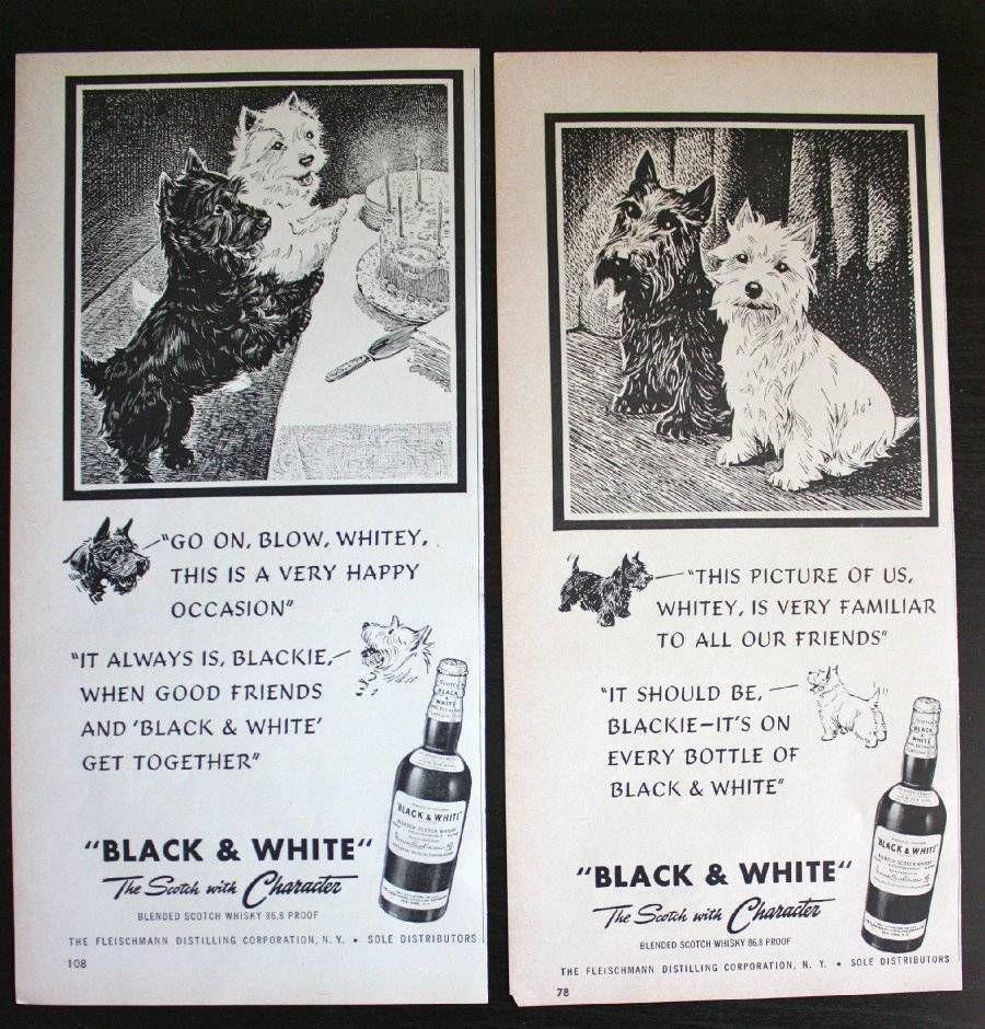 1940s Black White Whiskey Scottish Terrier Dog Birthday Vintage