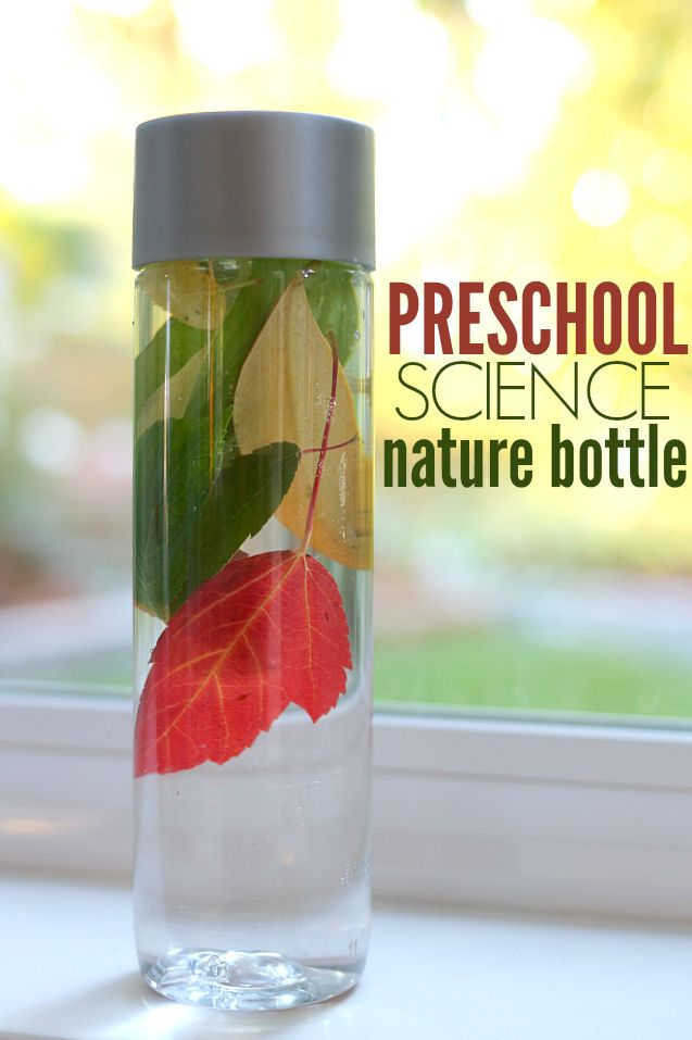 Preschool Science Fall Nature Bottle No Time For Flash Cards Fall Preschool Activities Preschool Science Preschool Science Activities