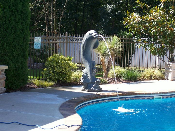 Large Dolphin Spitting Into Pool Installed By Garden Creations Swimming Pool Designs Pool Designs Pool