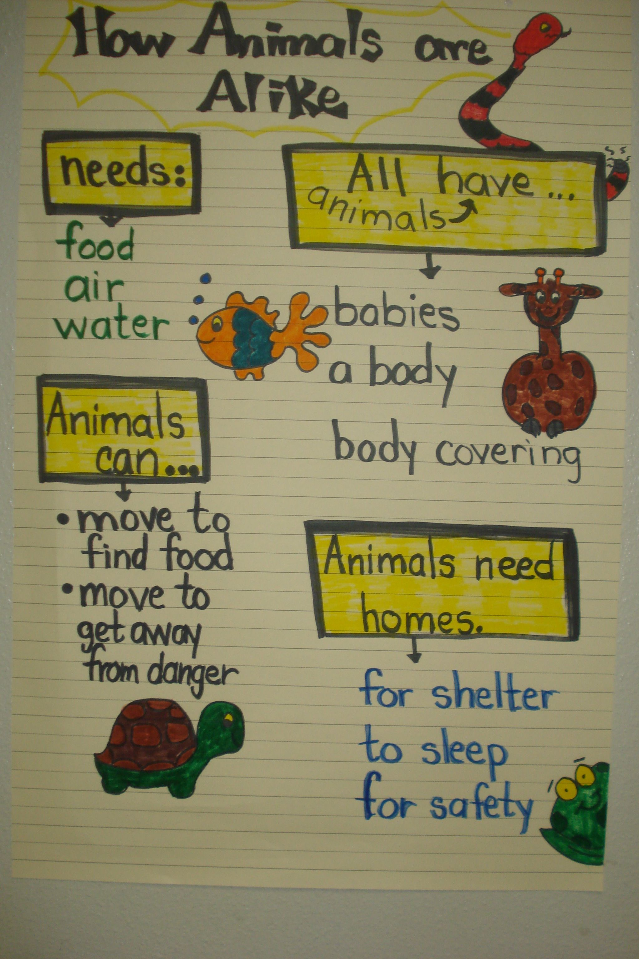 Animals Are Alike Chart Created By Hildelisa Diaz At