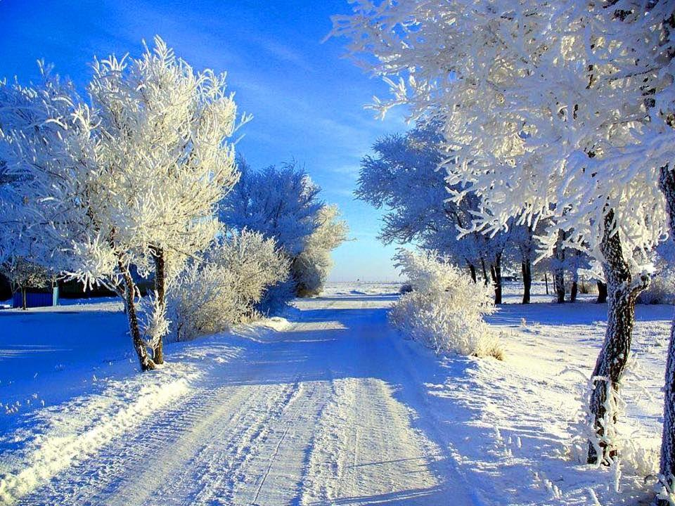 картинка ч добрым утром с зимними пейзажами проекте она
