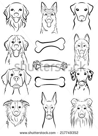 Dog line drawing stock photos images pictures shutterstock