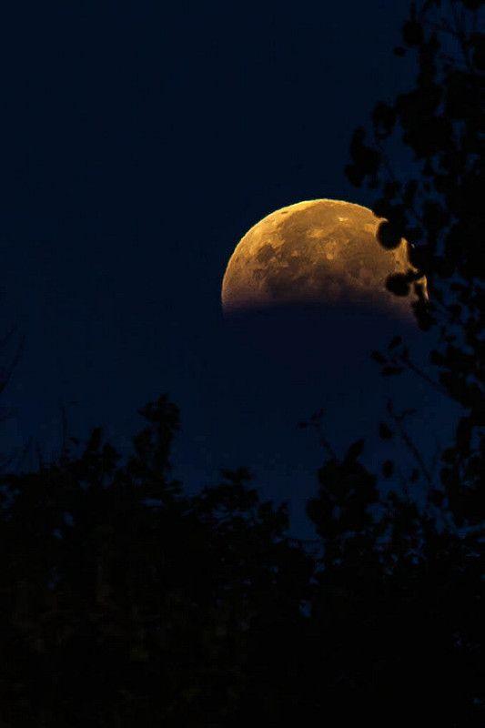 blood moon peeking | by jimmy_racoon