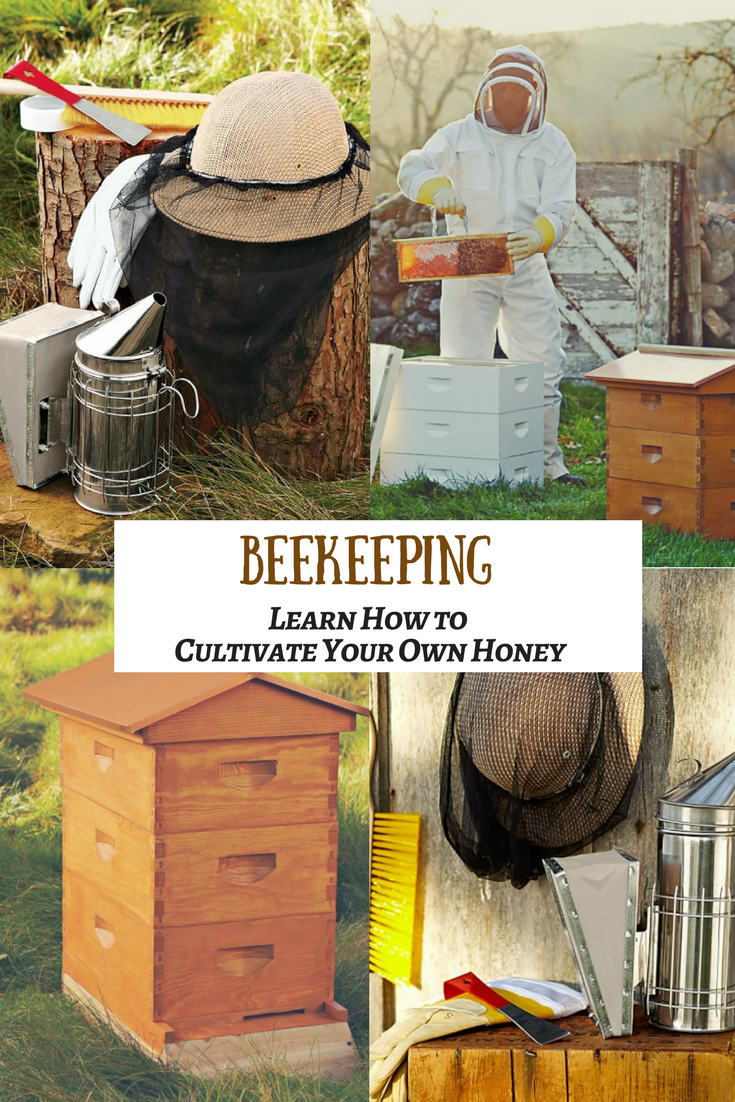 Raising bees has a variety of benefits. Not only will you ...