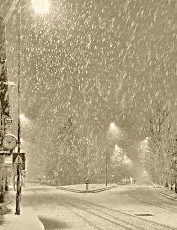 Photo of let it snow ..let it snow..let it snow..#winter #snow #christmas – tüdelü