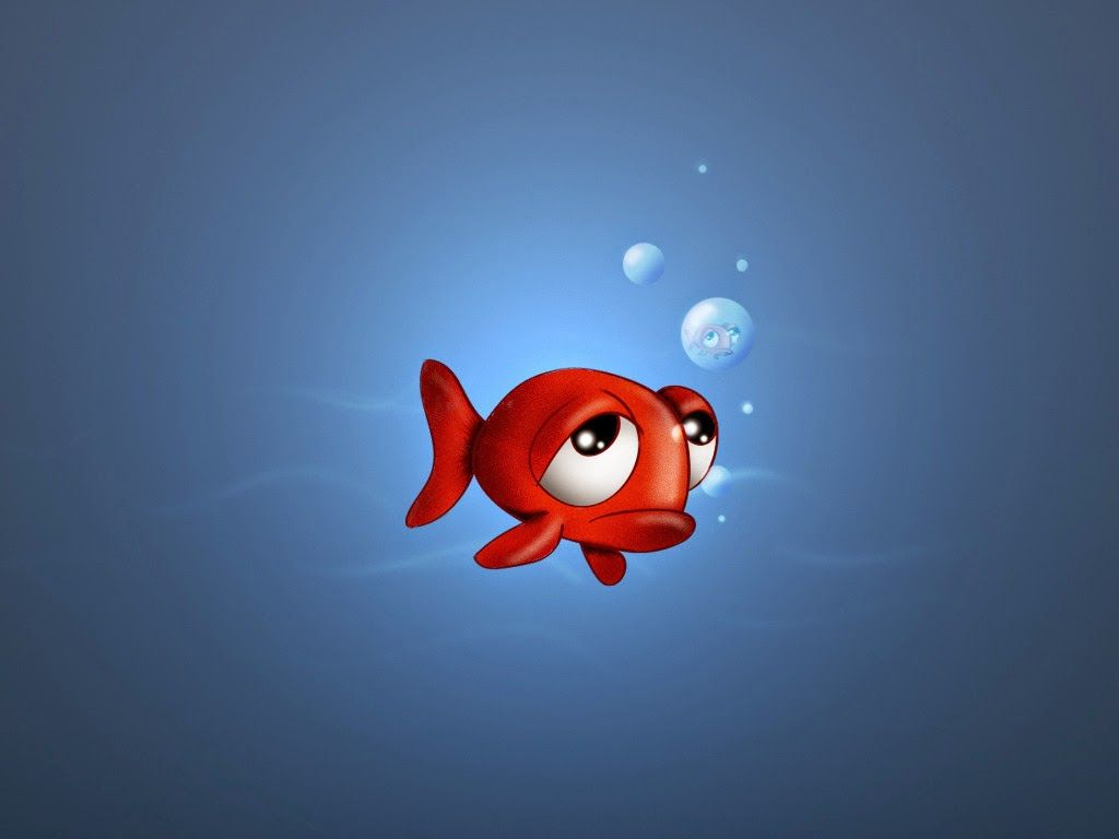 Download Wallpaper Fish Touch - ee575ba9045e3281805a3a464c5f8c7a  Perfect Image Reference_263057 .jpg