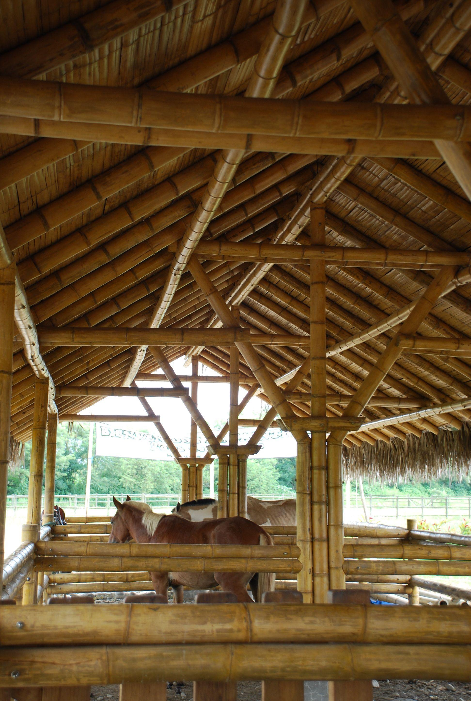 Caballeriza en bamboo dise o y construcci n loaiza - Construccion y diseno de casas ...
