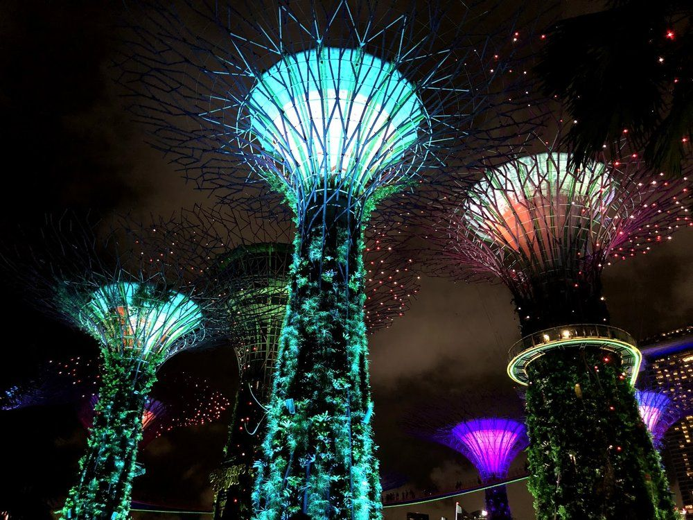 ee5793a867f1a76531e90069c3cce8b7 - Gardens By The Bay Singapore On Budget