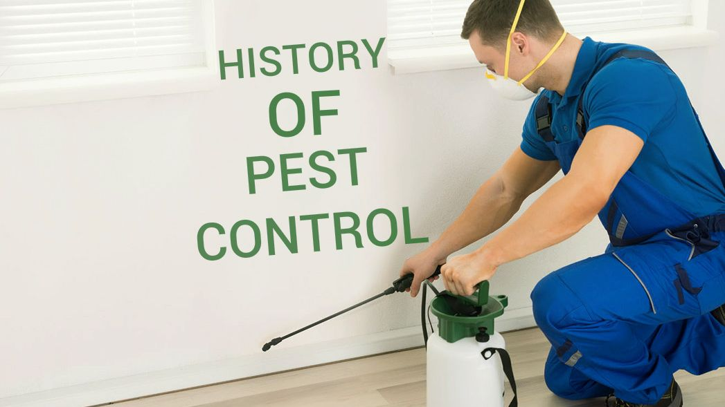 The History Of Pest Control Pest Control Pests Insect Control