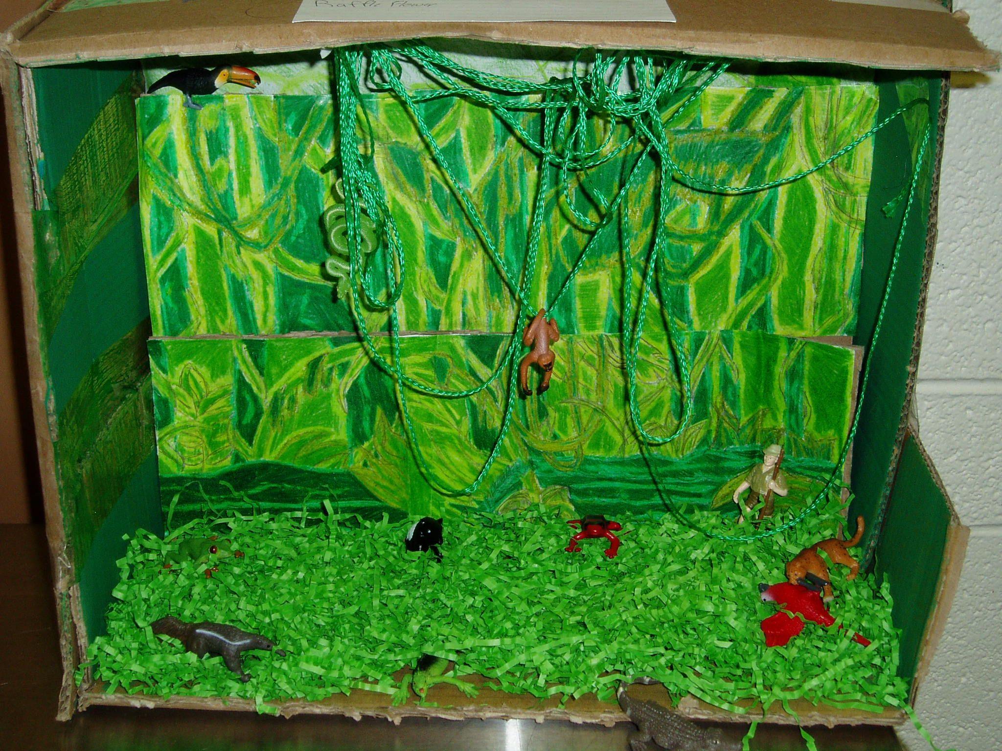 tropical rainforest project ideas