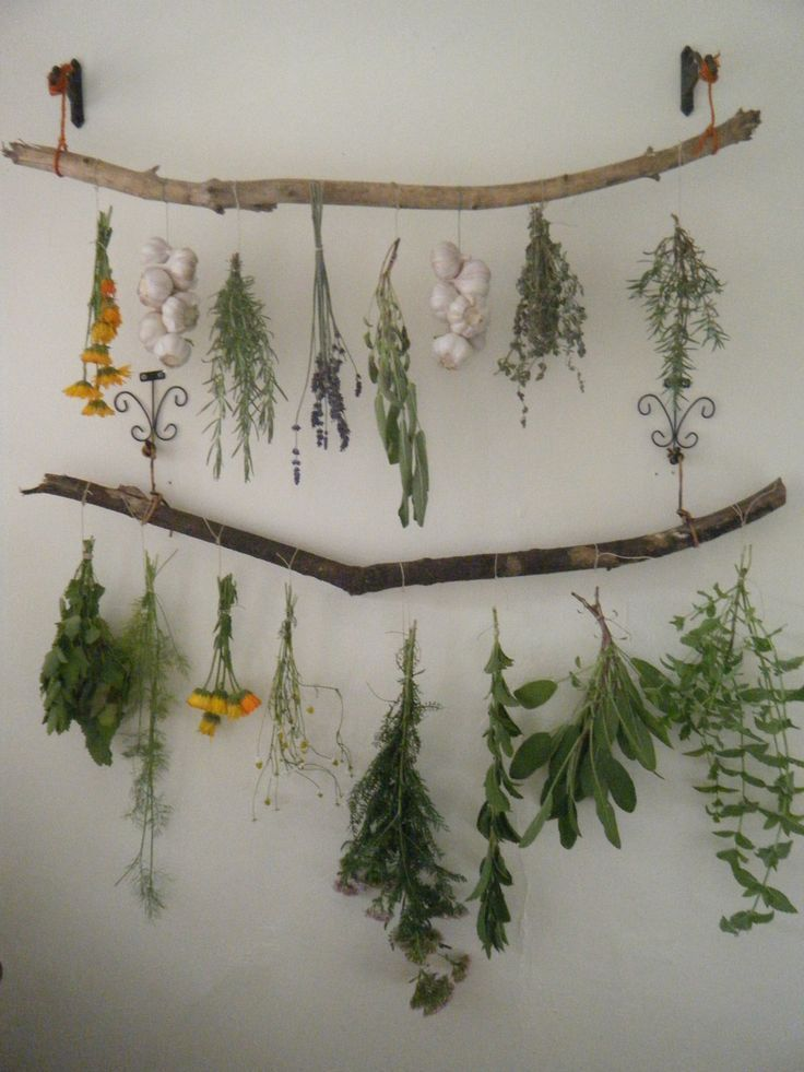 """Photo of Hanging herb garden ideas for your home – tulullabelle: """"my new t …"""