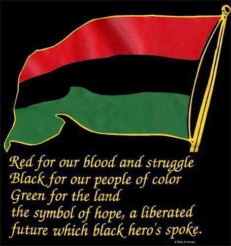 Image result for black power flag
